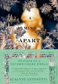 Mind Apart Travels in a Neurodiverse World