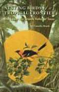 Louise Lindsey Merrick Natural Environment #40: Nesting Birds of a Tropical Frontier: The Lower Rio Grande Vally of Texas