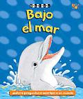Bajo El Mar: Under the Sea
