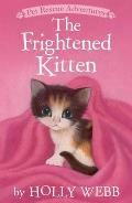 The Frightened Kitten