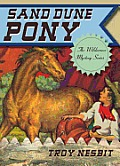 Sand Dune Pony (Wilderness Mystery)