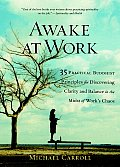 Awake at Work 35 Practical Buddhist Principles for Discovering Clarity & Balance in the Midst of Works Chaos