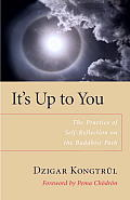 Its Up to You The Practice of Self Reflection on the Buddhist Path