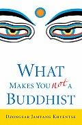 What Makes You Not a Buddhist Cover