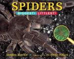 Spiders: Biggest! Littlest! (P) (Large Print)