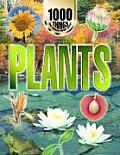 Plants: 1000 Things You Should Know about