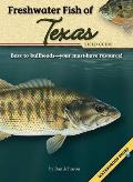 Freshwater Fish Of Texas Field Guide