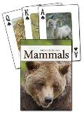 Mammals of the Northwest Playing Cards