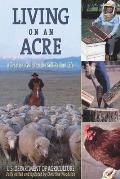 Mad Ducks & Bears