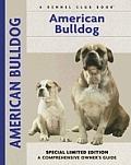 American Bulldog 012 Kennel Club