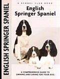 English Springer Spaniel A Comprehensive