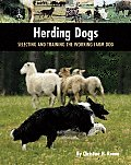 Herding Dogs Selecting & Training the Working Farm Dog