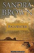 Rainwater (Large Print) (Thorndike Paperback Bestsellers)
