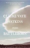 Battleborn Stories