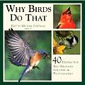 Why Birds Do That 40 Distinctive Bird Behaviors Explained & Photographed
