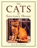 The Cats of Sanctuary House