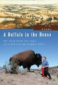 A Buffalo in the House: The True Story about a Man, an Animal, and the American West
