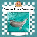 Chinese River Dolphins