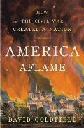 America Aflame: How the Civil War Created a Nation Cover