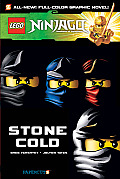Lego Ninjago 07 Stone Cold