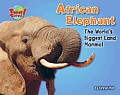 African Elephant: The World's Biggest Land Mammal