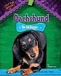 Dachshund: The Hot Dogger