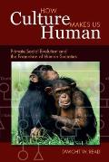 How Culture Makes Us Human: Primate Social Evolution and the Formation of Human Societies (Key Questions in Anthropology)
