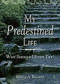 My Predestined Life: Why Should I Even Try?