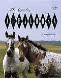 The Legendary Appaloosa: A Tribute in Words and Photos