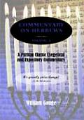 Commentary on Hebrews: Exegetical and Expository - Vol. 2 (PB)
