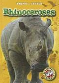 Rhinoceroses (Animal Safari)