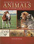 Drawing & Painting Animals The Essential Guide