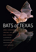 W.L. Moody, Jr., Natural History #43: Bats of Texas