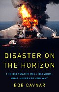 Disaster on the Horizon The Deepwater Well Blowout What Happened & Why