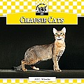 Chausie Cats (Checkerboard Animal Library: Cats)