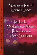 Molecular Mechanism of Mental Retardation in Down Syndrome