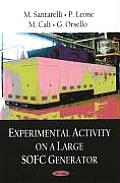 Experimental Activity on a Large Sofc Generator