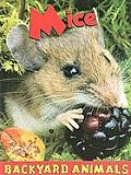 Mice (Backyard Animals)