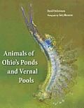 Animals of Ohio's Ponds and Vernal Pools