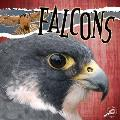 Falcons (Raptors)