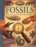 Viewfinder: Fossils (Viewfinder)