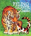 Felino Grande, Gatito