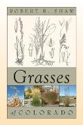 Grasses of Colorado Cover