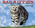 Bad Kitties Wall Calendar