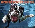 Cal14 Underwater Dogs Wall Calendar 2014