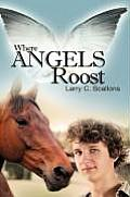 Where Angels Roost