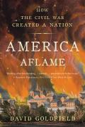 America Aflame: How The Civil War Created A Nation by David Goldfield