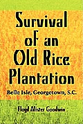 Survival of an Old Rice Plantation: Belle Isle, Georgetown, S.C.
