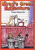 Stray's Great Adventure