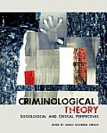 criminological theory into action